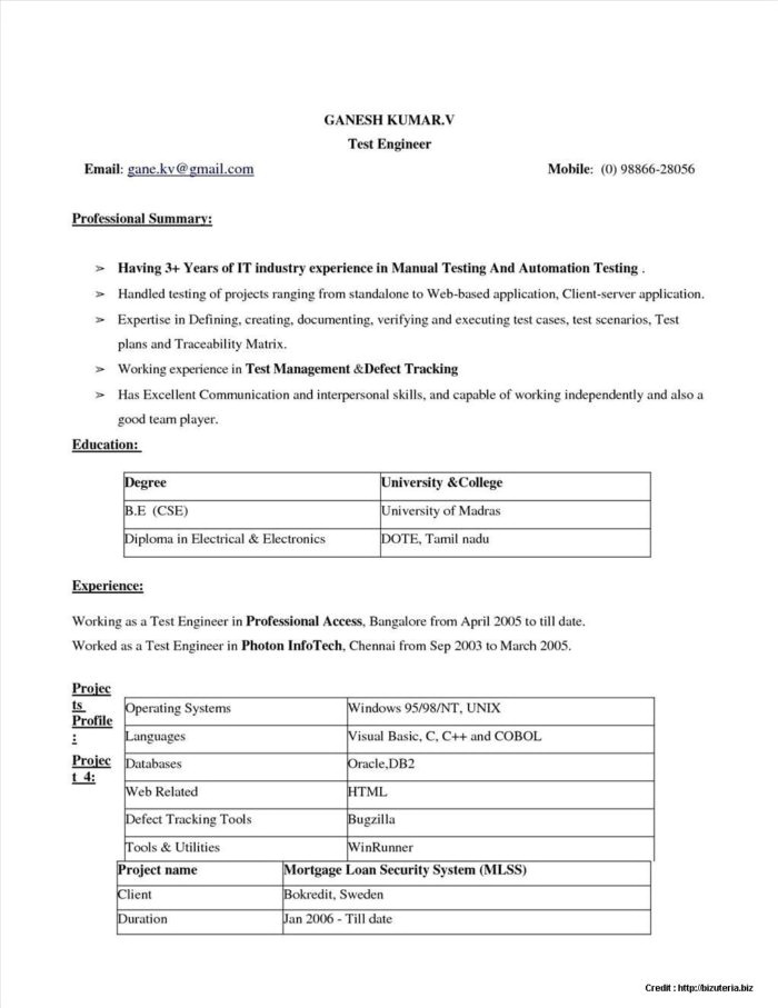 Free Fill In The Blank Printable Resume