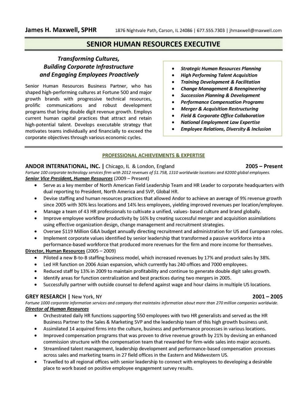 Resume Format For Experienced Executives